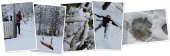 View snow in Trondheim